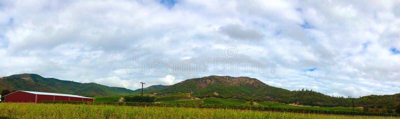 De zuidelijke Wijngaard van Oregon stock afbeeldingen