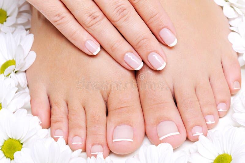 De zuivere en vrouwelijke voeten van de Schoonheid royalty-vrije stock afbeelding