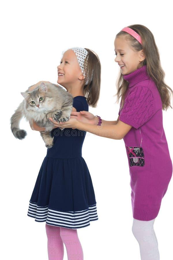 De zusters spelen met de kat stock afbeelding