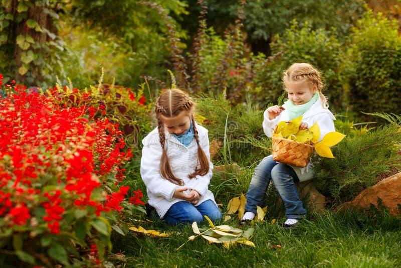 De zusters verzamelen gevallen bladeren stock afbeelding