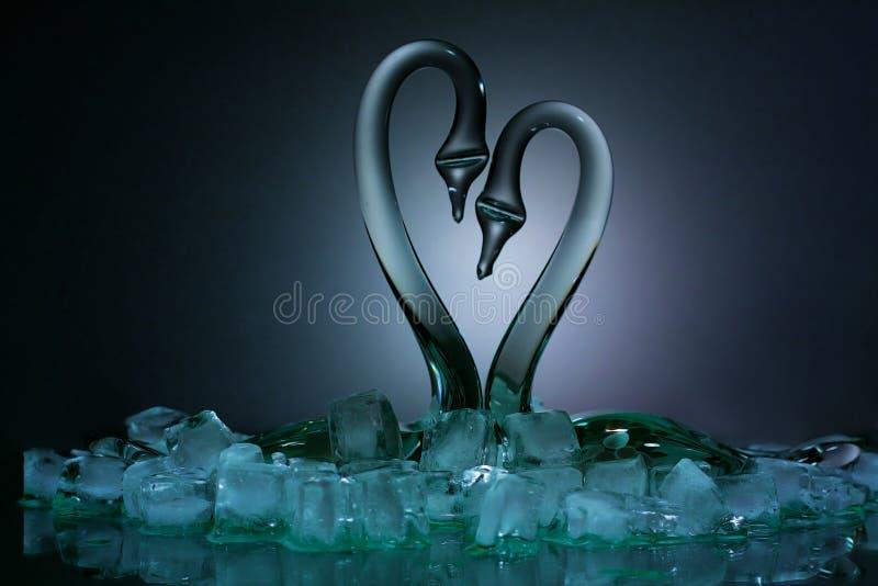 De zwaan van het paar in ijs stock foto