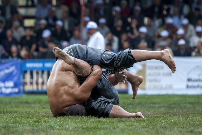 De zwaargewicht worstelaars concurreren bij het de Olie van Kagithane Turkse het Worstelen Festival in Istanboel in Turkije royalty-vrije stock afbeelding
