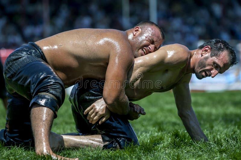 De zwaargewicht worstelaars vechten voor suprematie bij het de Olie van Elmali Turkse het Worstelen Festival in Turkije stock afbeeldingen