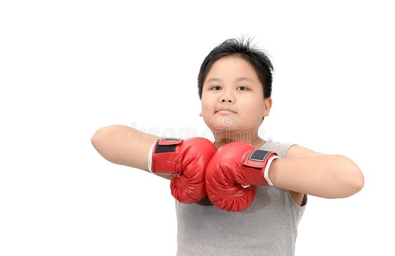 De zwaarlijvige jongen toont spier met rode bokshandschoenen royalty-vrije stock foto's