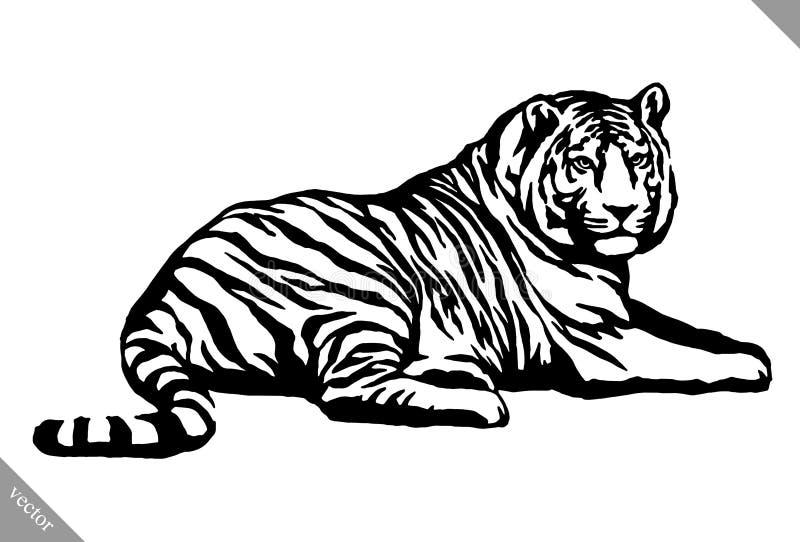 De zwart-witte inkt trekt tijger vectorillustratie stock illustratie