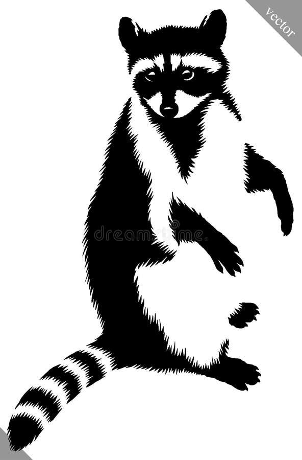De zwart-witte lineaire verf trekt wasbeer vectorillustratie stock illustratie