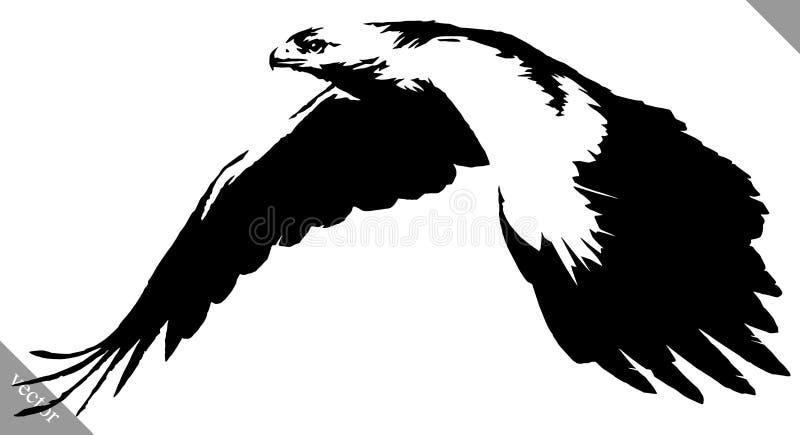 De zwart-witte verf trekt de vectorillustratie van de adelaarsvogel stock illustratie