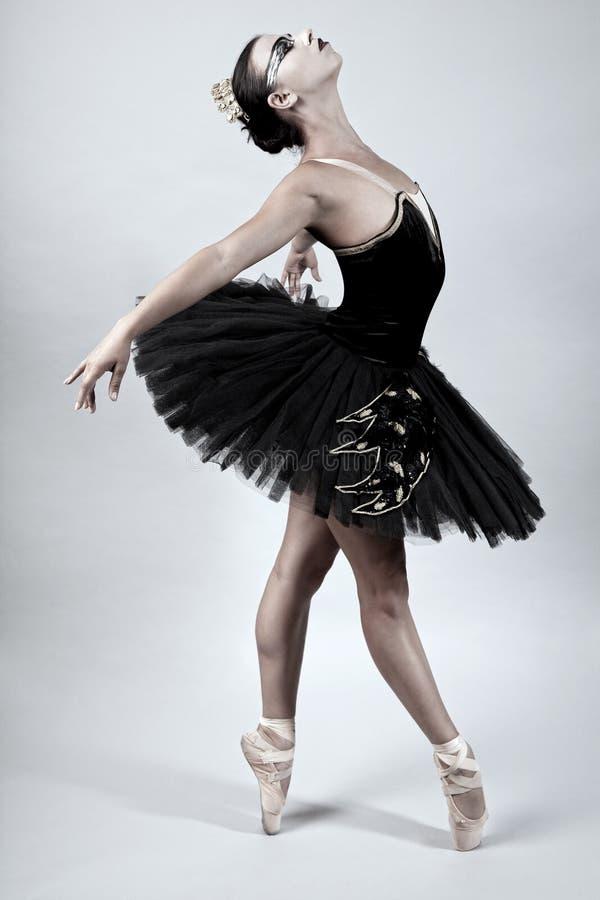 De zwarte Balletdanser van de Zwaan stock fotografie