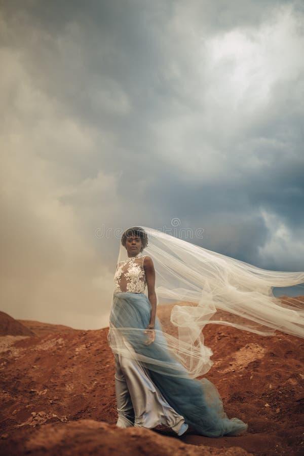 De zwarte bruid in golvende lange huwelijkskleding en bruidssluier bevindt zich op achtergrond van mooi landschap stock afbeeldingen