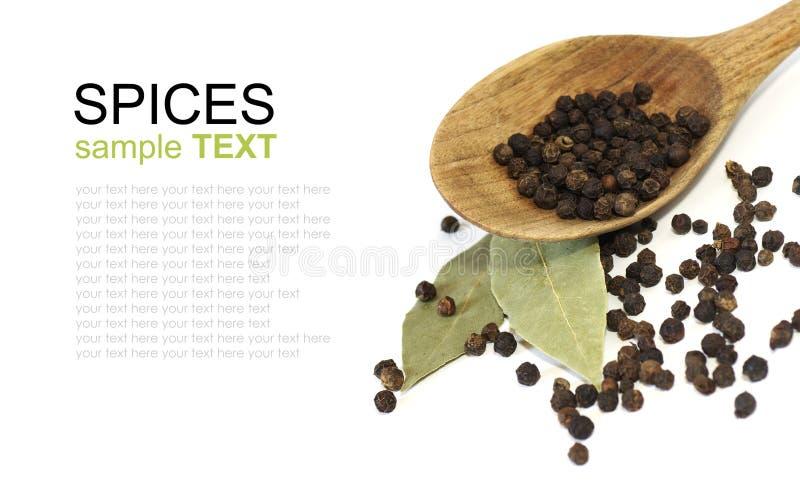 De zwarte peper van kruiden stock foto