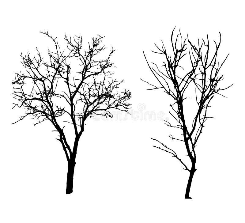 De zwarte silhouetten van de de winterboom royalty-vrije illustratie