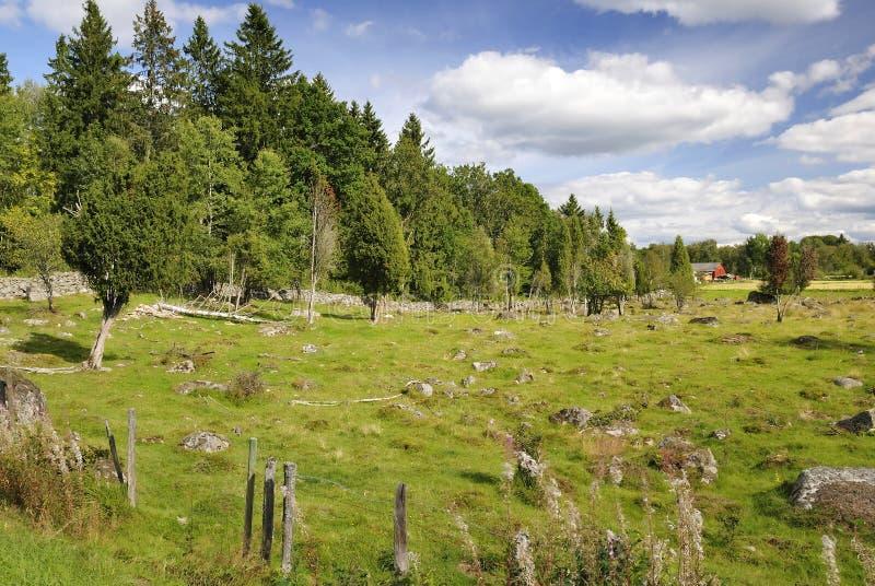 De Zweedse details van het de zomerland stock afbeelding