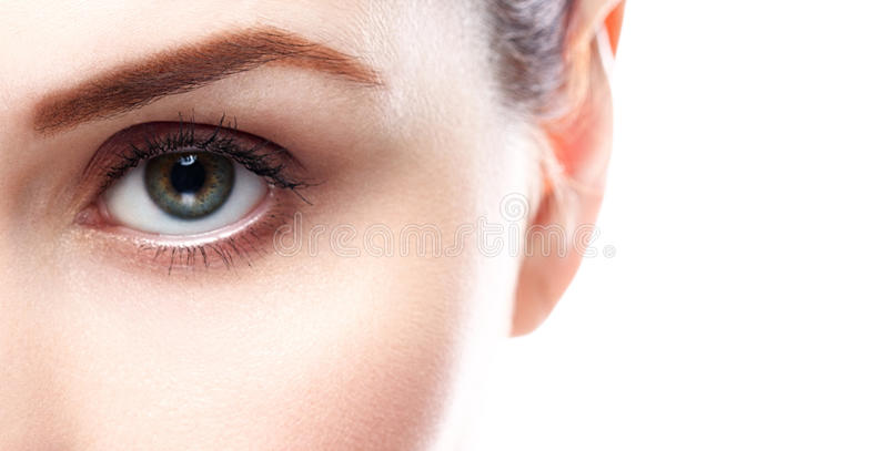 De zwepen van de wenkbrauwogen van de oogvrouw stock fotografie