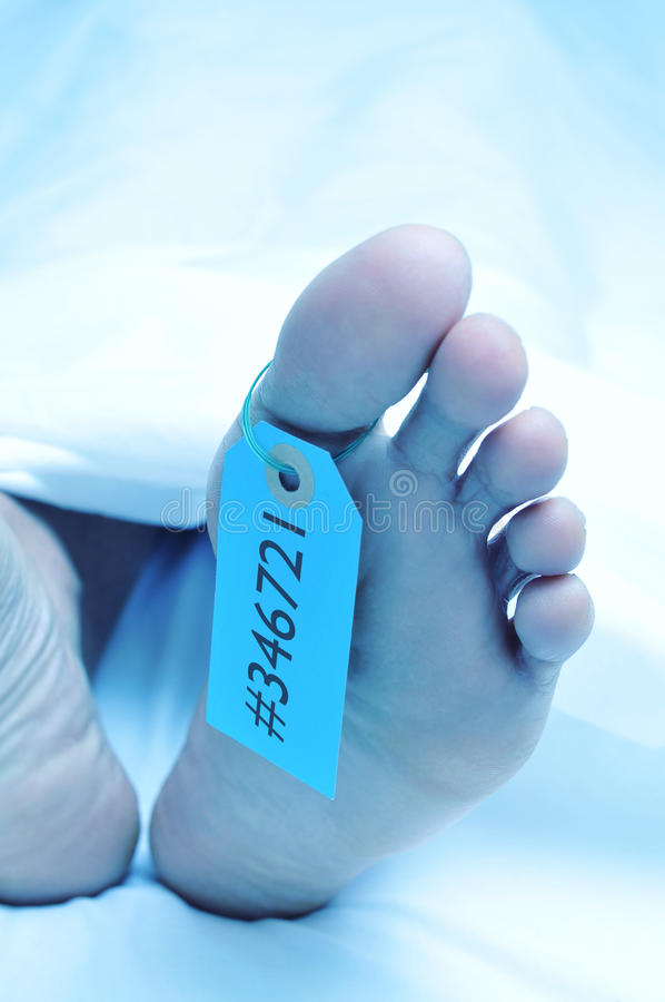 Dead body with a toe tag. Closeup of the feet of a dead body covered with a sheet and with a tag with an identification number tied on the big toe royalty free stock images