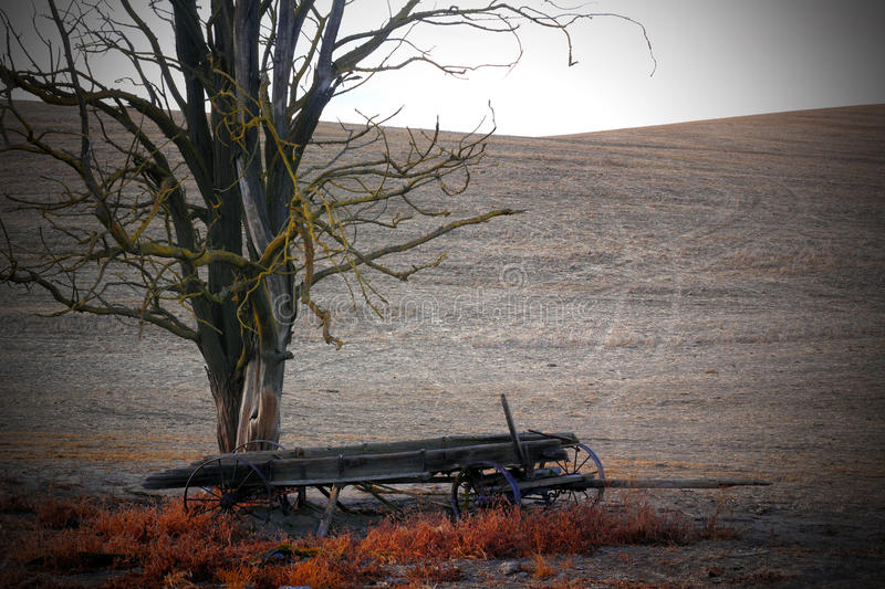 Dead Frontier Wagon stock images
