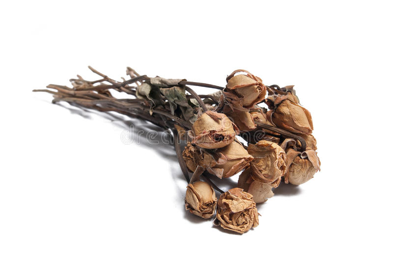 Dead Roses. Photo of a bunch of dead roses, symbolizing the end of a love. The bouquet of flowers lay on the ground and they cast a shadow. Additional format royalty free stock photo