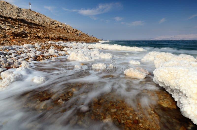 Download Dead Sea stock image. Image of deposit, beach, salt, israel - 23556575