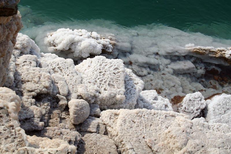 Dead Sea coast royalty free stock photo