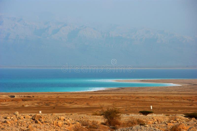 Download Dead Sea Shoreline Royalty Free Stock Photo - Image: 18495295