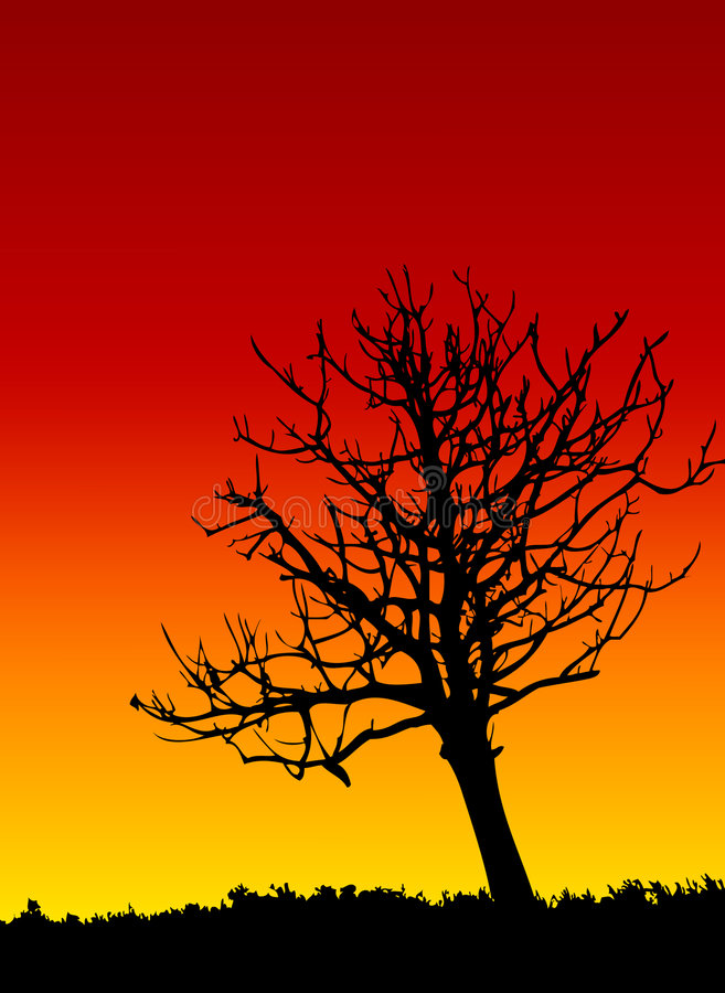 Download Dead tree stock vector. Image of outback, growth, yellow - 3063491