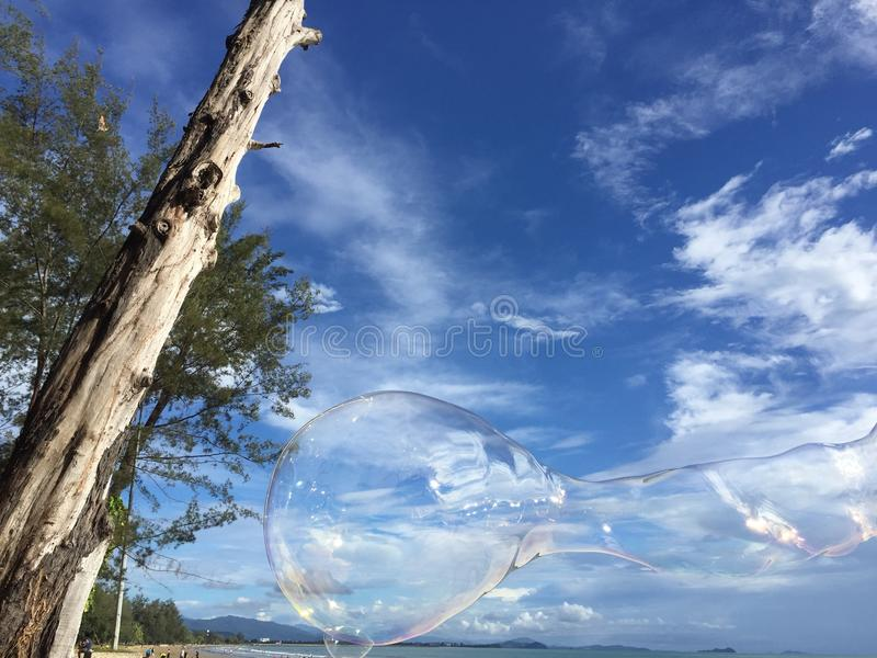 Dead tree with bubbles and sky stock images
