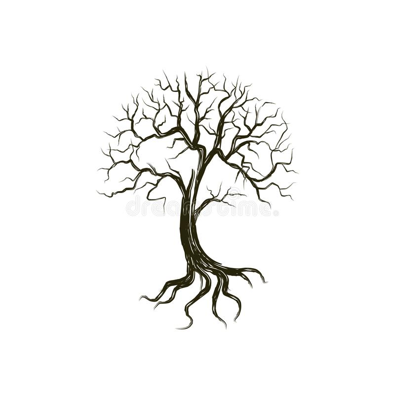 Free Dead Tree  Illustration, Dry And Molting Tree Sketch Rough And Hand Drawing Style Stock Photography - 153952102