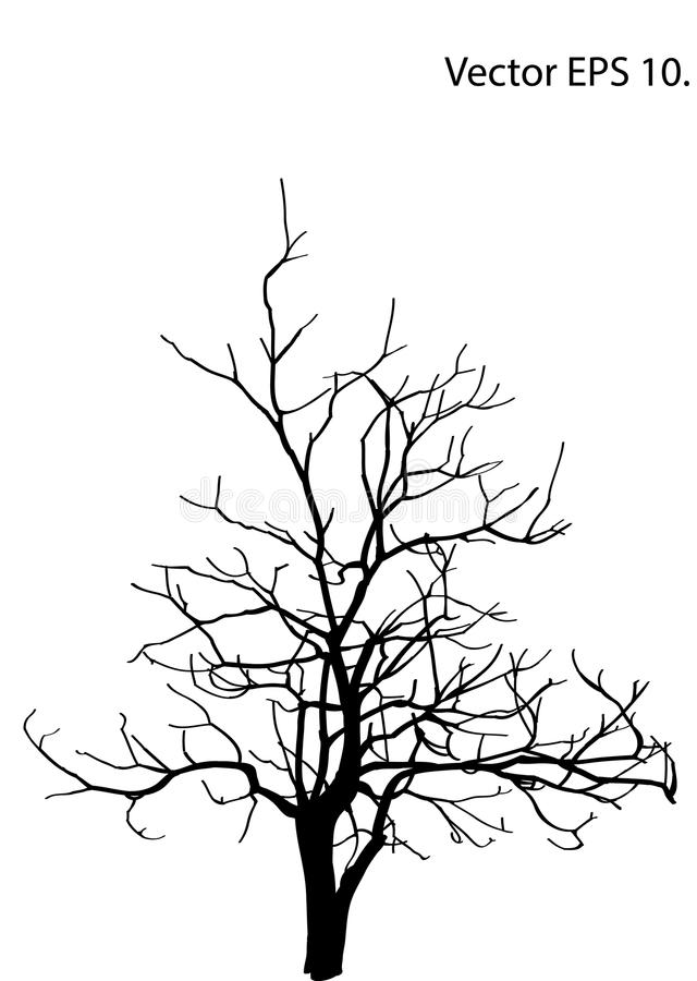 Free Dead Tree Without Leaves Vector Illustration Sketched Royalty Free Stock Photography - 90920127