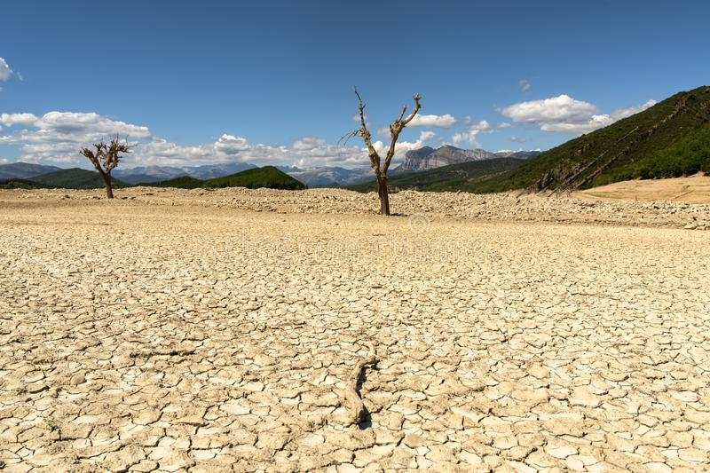 Dead trees on a dry Reservoir in the Spanish Pyrenees mountains royalty free stock photo