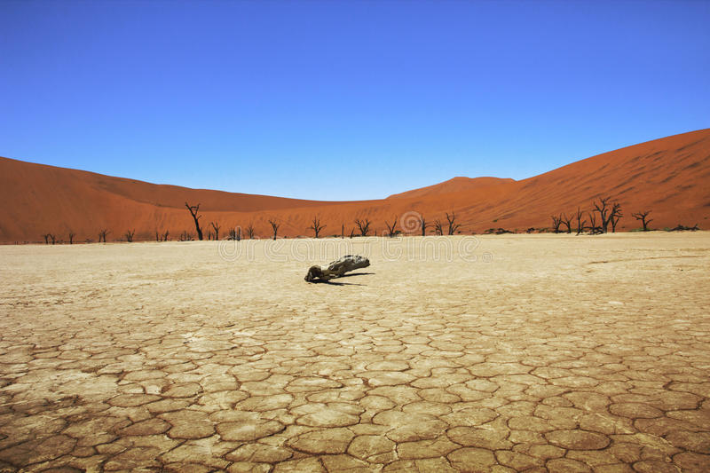 Dead vlei namibia stock images