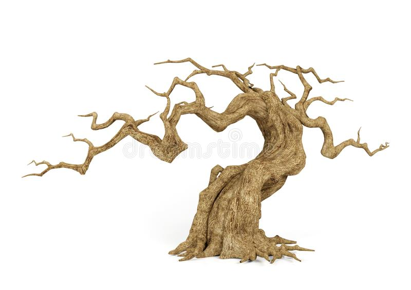 Dead withered tree isolated on white background, decorative object for Halloween scene, 3D rendering.  royalty free illustration
