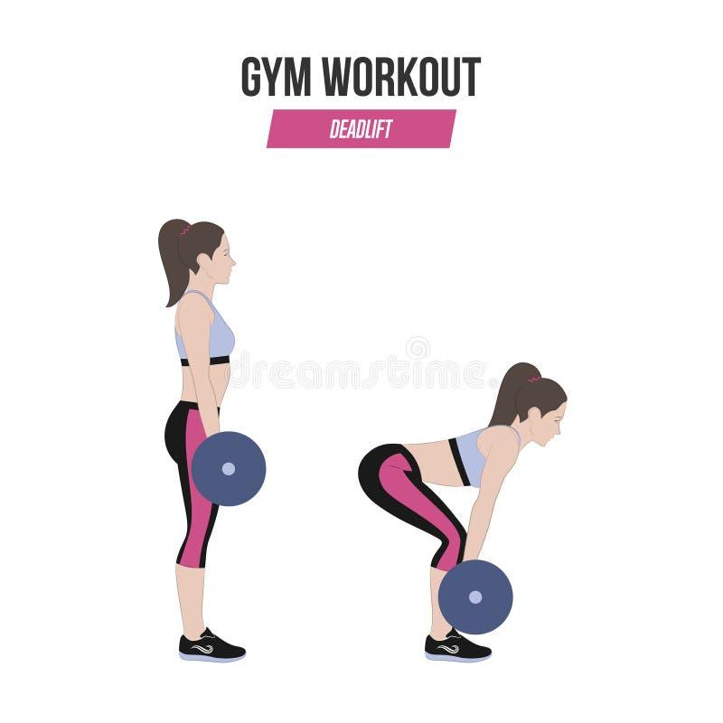 Deadlift Deadlift com um barbell Exercícios atléticos Exercícios em um gym Ilustração de um estilo de vida ativo Vetor ilustração stock