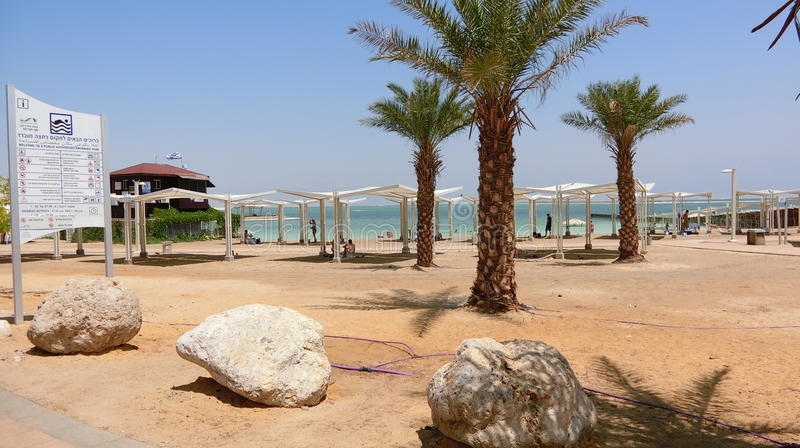The deadsea beach stock images
