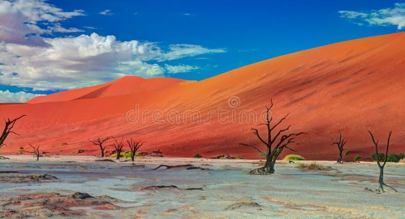 Deadvlei in Namib-Naukluft national park Sossusvlei, Namibia stock photography
