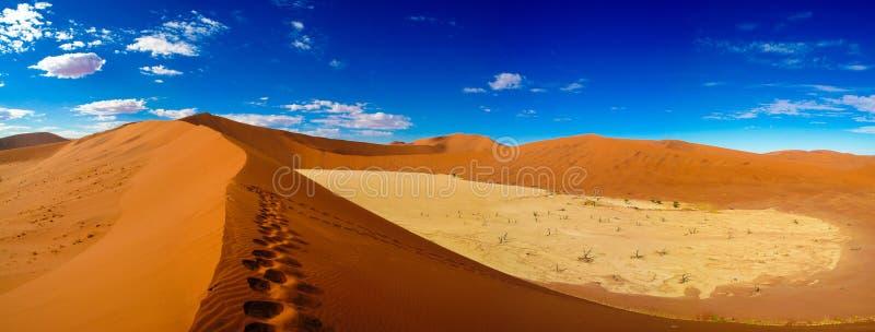 Deadvlei in Namib-Naukluft national park Sossusvlei, Namibia royalty free stock photos