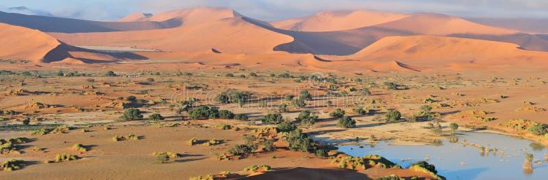 Deadvlei and Sossusvlei panorama stock image