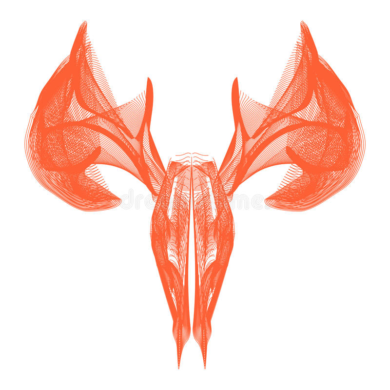 Dear skull royalty free stock image