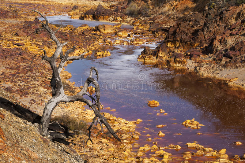 Download Death And Desolation In The Tinto River Stock Image - Image: 30910179