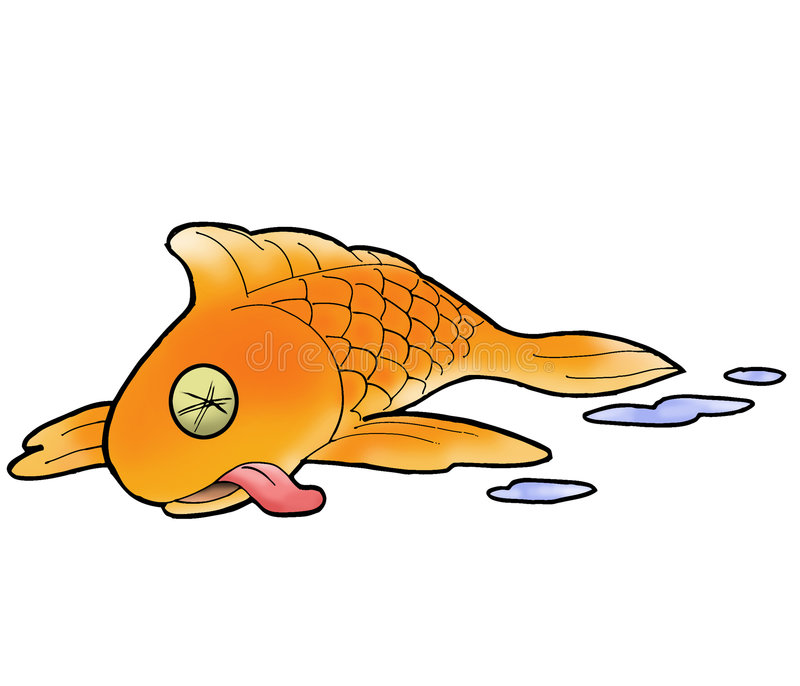 What dreams of a dead fish 65