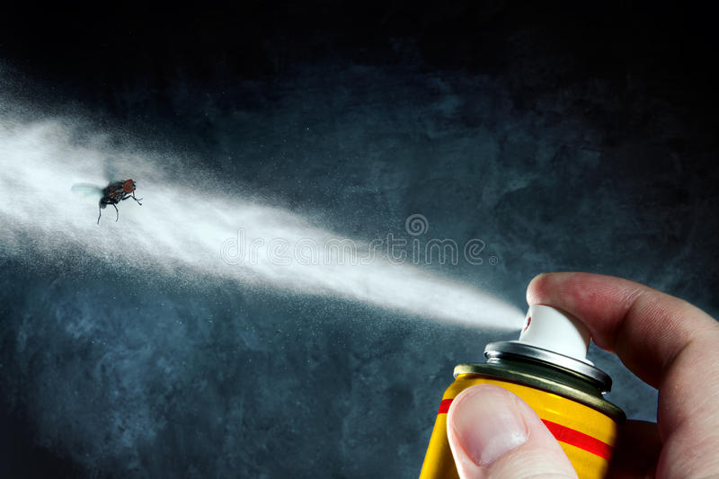 Death of a fly. Man spraying on a fly a poisonous aerosol