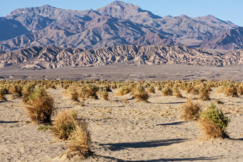 Death Valley image libre de droits