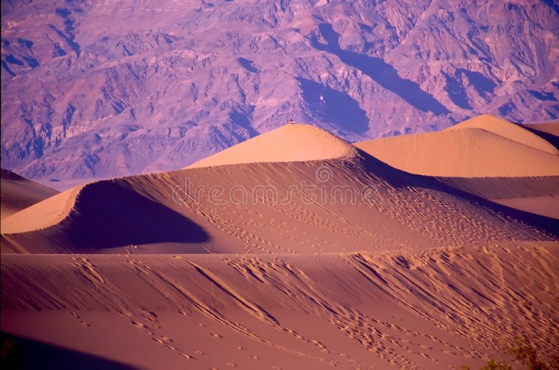 Death Valley fotos de stock royalty free