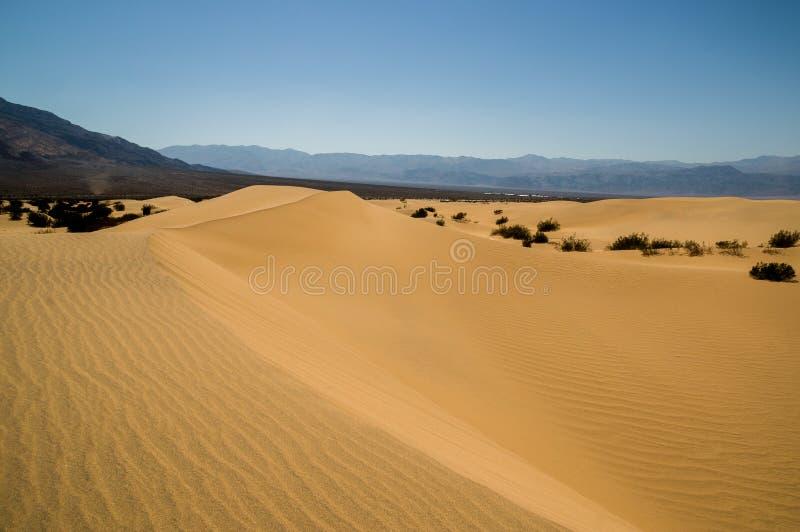 Death Valley för landskap för sanddyn nationalpark royaltyfri fotografi