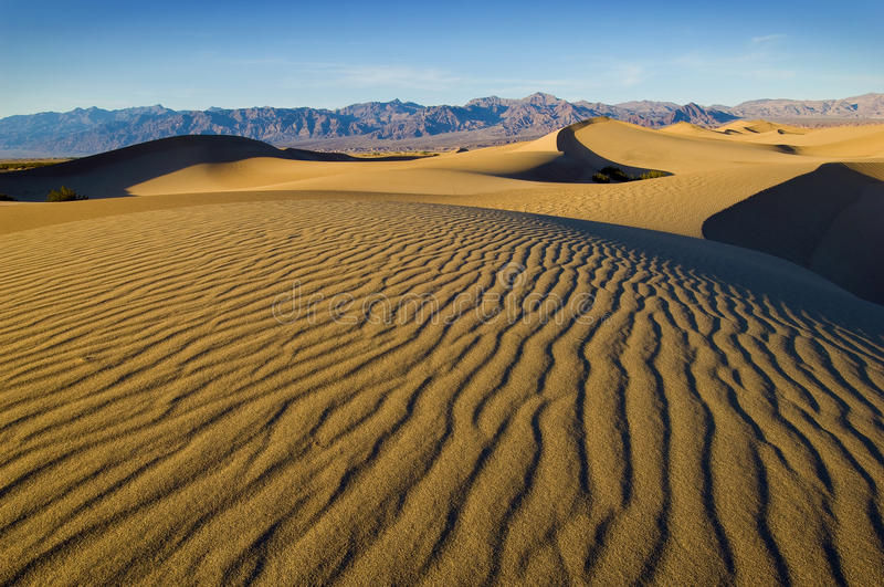 Death Valley National Park. Mesquite Dunes near Stovepipe Wells in Death Valley National Park. The setting sun casts long shadows down the ripples of sand on royalty free stock photos