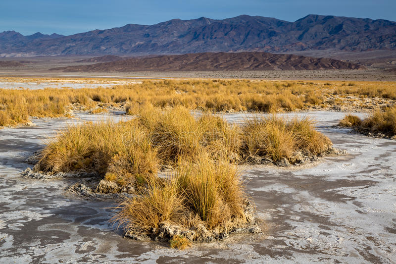 Death Valley National Park. In California royalty free stock photo