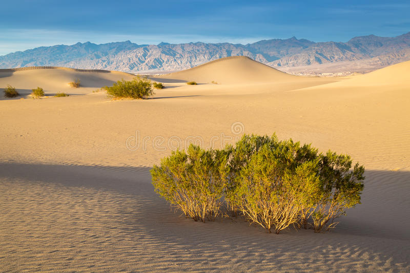 Death Valley National Park. In California stock images