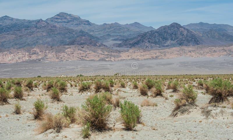 Death Valley National Park. Landscape in Death Valley National Park, California, USA royalty free stock images