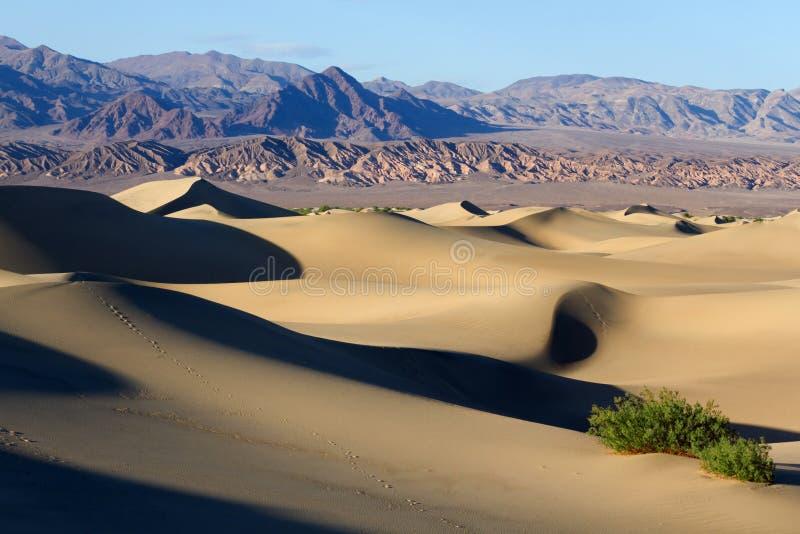 Death Valley nationalpark royaltyfri fotografi