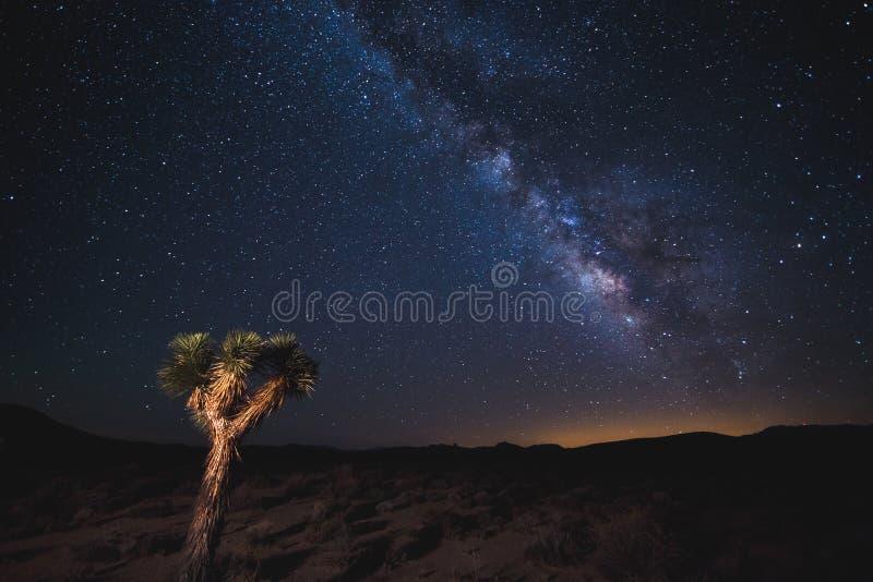 Death Valley under Vintergatan arkivbild