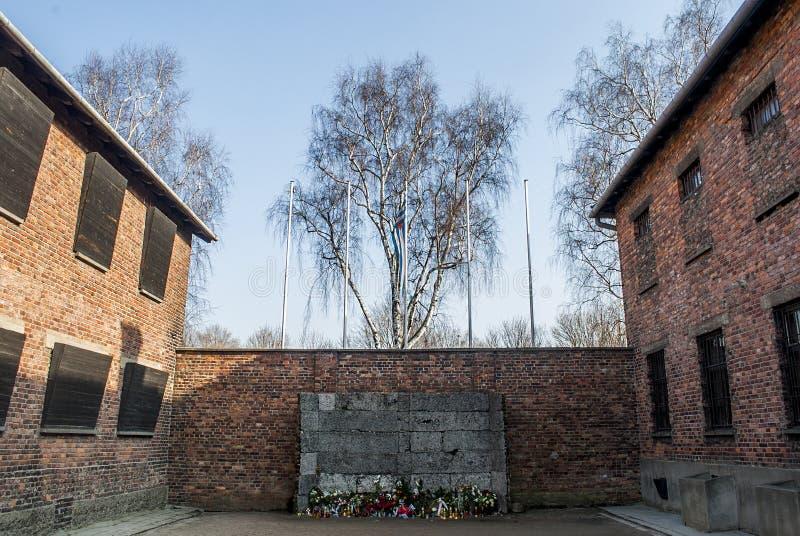 The Death Wall, Auschwitz-Birkenau concentration camp, Poland. The Death Wall, Auschwitz-Birkenau concentration camp for extermination, Poland stock photography