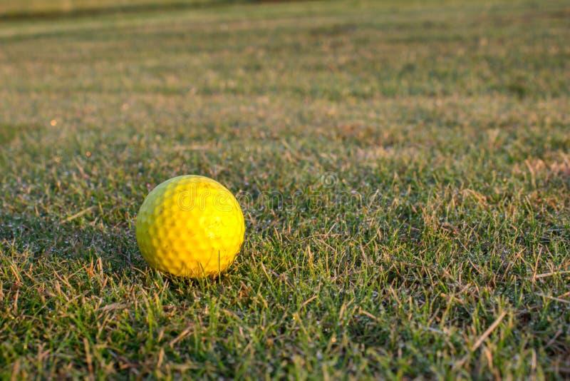Deatil da bola de golfe no curso da grama do golfe fotografia de stock royalty free